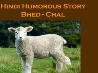 Hindi Funny Story
